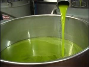 frisches-grünes-Olivenöl-extra-vergine